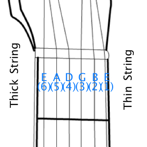 strings guide